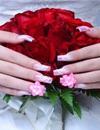 Hoa hồng nở trên ngón út
