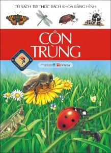 Tủ sách tri thức bách khoa bằng hình: côn trùng